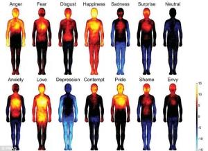 gambar sensasi tubuh